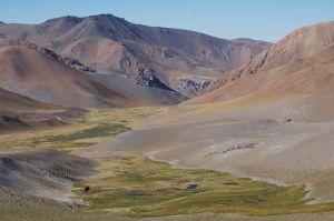 Au milieu des vallées désertiques, quelques petites oasis